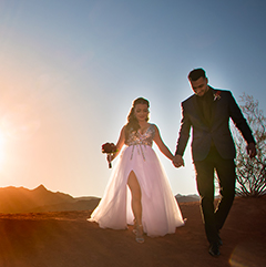 Valley of Fire Bride & Groom