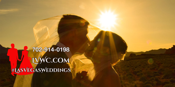 Valley of Fire Wedding Photos